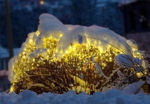 LED světelná síť
